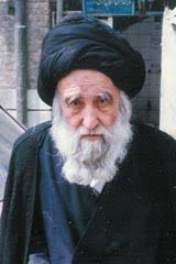 سید جواد  فقیه سبزواری